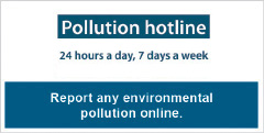 Report any environmental pollution online