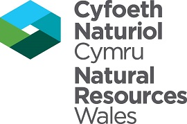 Natural Resources Wales (Small)